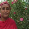 Somaliland clan loyalty hampers women's political prospects