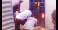 Braamfisherville, Soweto: Burning  Somali man