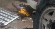 Suicide Bombings at Somalia Hotel The country's deputy prime minister was  among those wounded