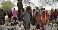 AMISOM appeals for humanitarian assistance for El Baraf residents