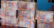IMF Says Donors May Partly Forgive Somalia's $5.3-Billion Debt