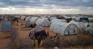 Gunmen kidnap two teachers from Kenya's Dadaab refugee camp