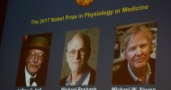 Three Americans win Nobel Prize for Medicine for discoveries about body's daily rhythms
