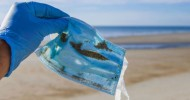 Five things you should know about disposable masks and plastic pollution